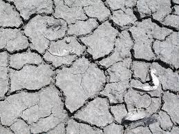 erosión de suelos a causa de la deforestación
