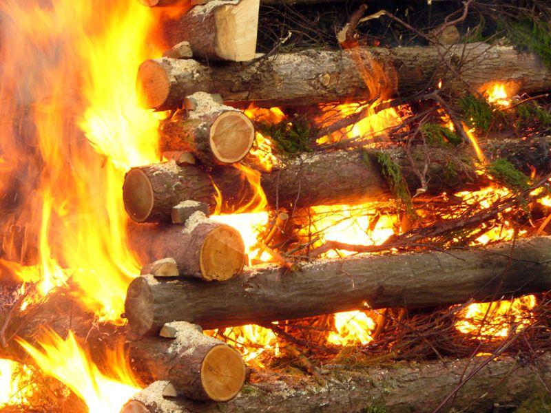 Propiedades termicas de la madera